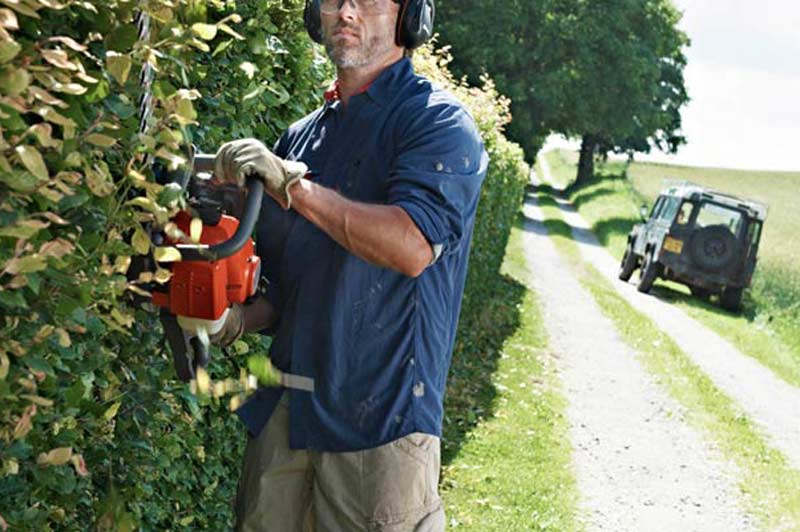 Man Trimming Hedge with Hedge Cutter